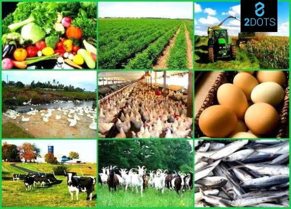How 2dotsmarket can help your Food and Agriculture business